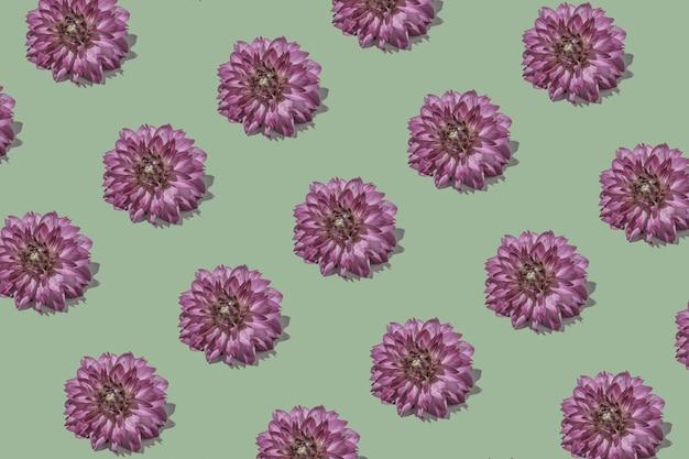 エレガントなダリアとグラフィックの最小限の花のパステルカラーのロマンチックなパターン。フローラトレンドクリエイティブコンセプト。