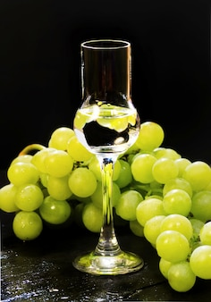 Grappa glass with white grapes bunch