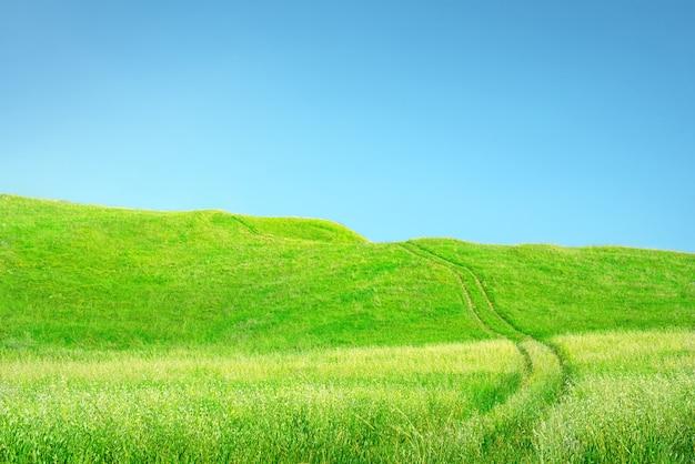 잔디와 하늘 배경입니다. 맑고 푸른 하늘 위에 바퀴 트랙과 언덕이 있는 푸른 잔디