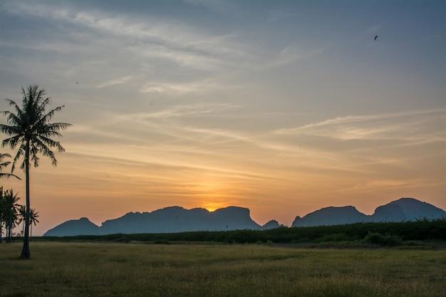 サムロイヨッド国立公園に提出された草プランブリプラチュワップキーリカーンタイ