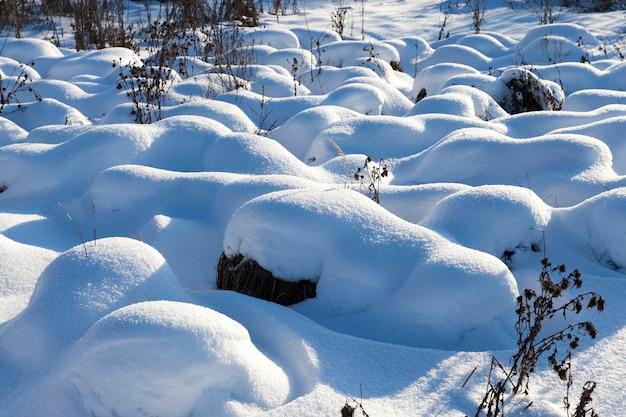 降雪や吹雪の後の大きな漂流の草、寒い気候と雪の形での降水量の多い冬の季節は草や乾燥した植物を覆います