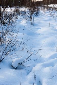 Трава в больших сугробах после снегопадов и метелей, зимой
