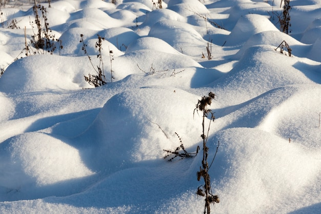 Трава в больших сугробах после снегопадов и метелей