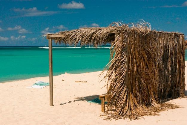 Grass shelter on aruban beach