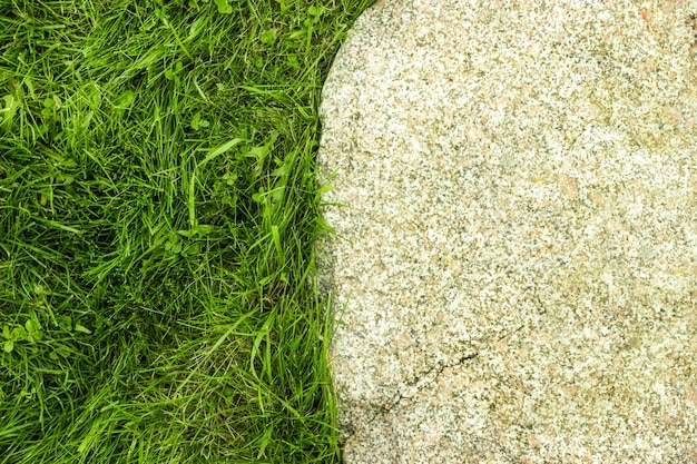 Grass and stone. close-up. top view.