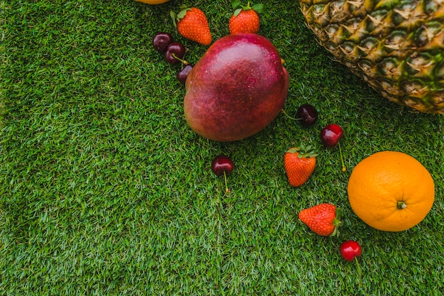 Superficie erba con frutta e spazio vuoto