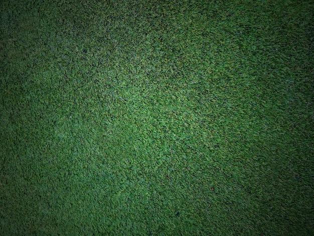 Grass texture background Premium Photo