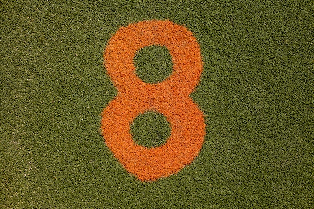 Grass texture with number eight