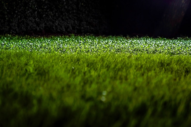 Трава на земле в темном ночном саду с прожектором.
