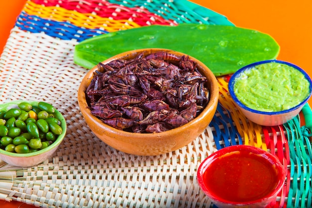 Grasshoppers chapulines snack. traditional mexican food