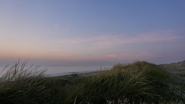 일출 빛에 의해 조명 해변에 잔디 언덕. 지중해