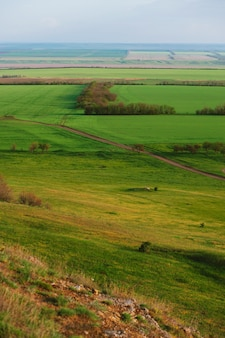 Grassy field and hills. rural landscapes. shot from above. beautiful top view of sown fields.