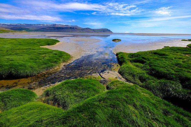 Grassy field near a seashore with mountains in the distance at daytime