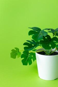 緑の鉢に草が茂った緑のプラスチック植物