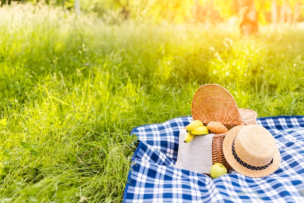 Grassy sunlit meadow with picnic basket on checkered plaid