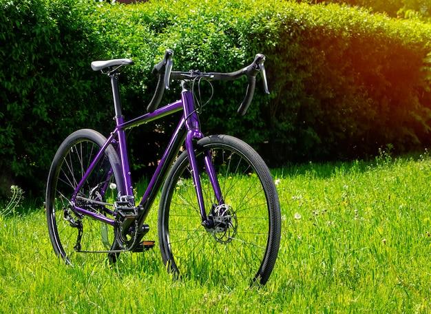 公園の緑の芝生に砂利自転車。