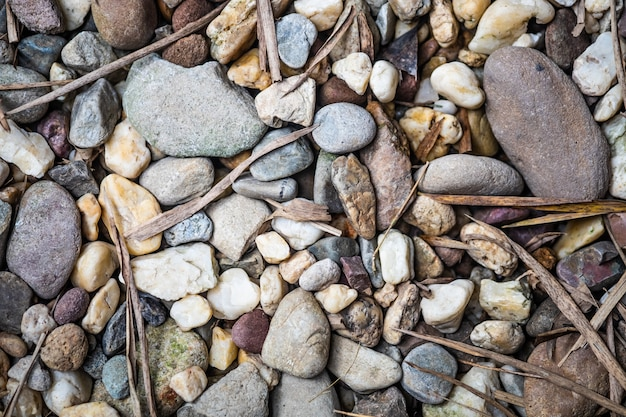 Gravel and leaves background.