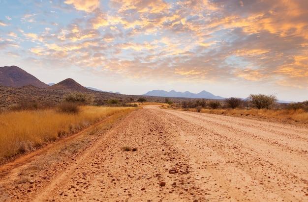 ナミビアのアフリカの茂みの砂利道