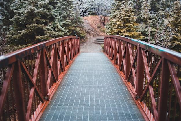 灰色と茶色の橋