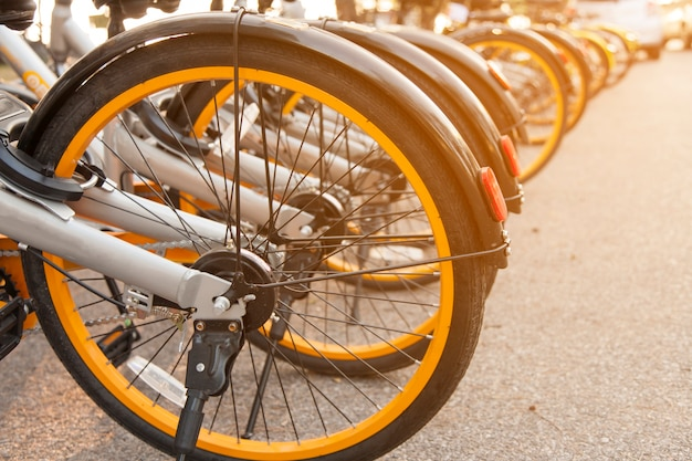 Gray bikes with yellow wheels