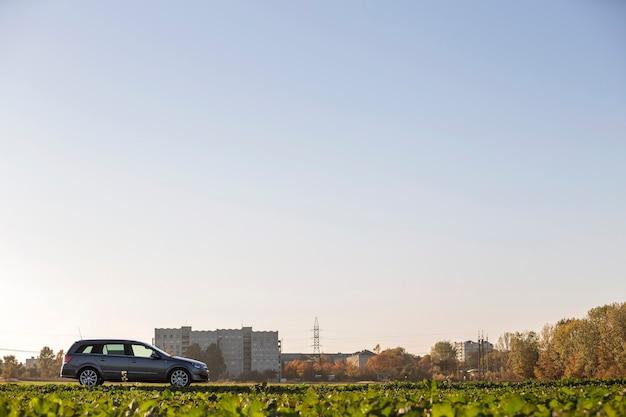 녹색 초원, 먼 도시 건물, 맑은 하늘 복사 공간 배경에 주차된 회색 차가 있습니다. 교통, 여행, 차량 디자인 컨셉입니다.