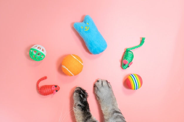 Gray cat paws and accessories for pets: ball, mice, comb. yellow background, copy space, top view. pet supplies concept.