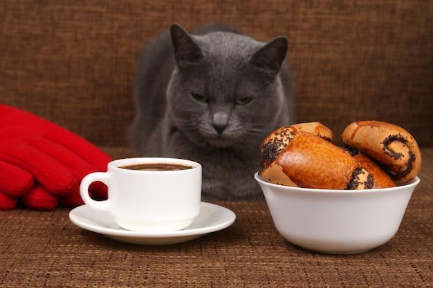 Серый кот сидит возле белой чашки черного кофе и булочки с маком
