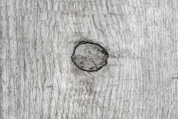 Gray color old wood background with structure knot. close-up macro view of natural ancient timber texture, wooden pattern.
