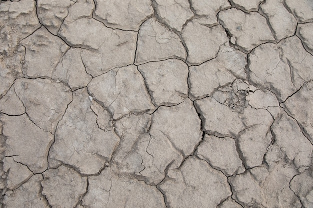 The gray dried soil in the landscape