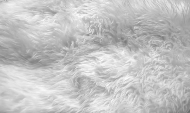 Gray fluffy texture