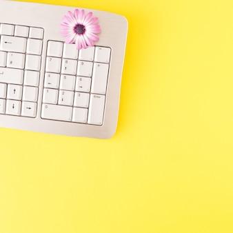 노란색 바탕에 회색 키보드와 분홍색 꽃. 사이버 최소한의 평면 위치 개념입니다.