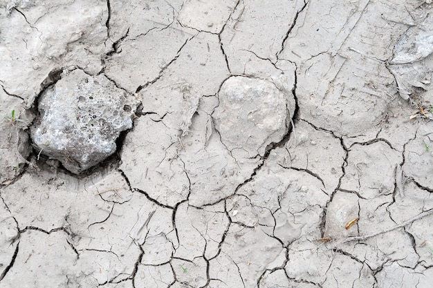 Gray land background cracked during drought with a small amount of dry grass and stones. ecology, environment, bad soil in months without rain