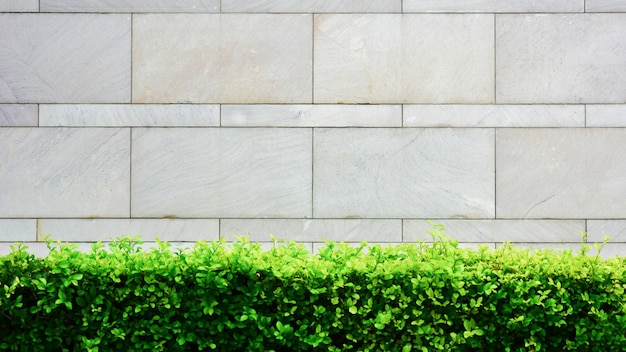 Gray marble wall background