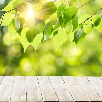 Gray natural wood table top or wooden terrace with greenery bokeh and sunrays in the morning. product display place or design visual layout