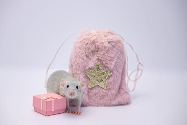 Серая крыса сидит рядом с розовой меховой сумкой и подарочной коробкой.