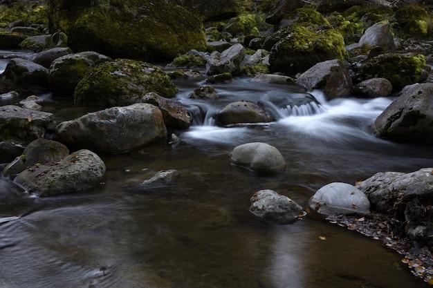 Серые скалы на реке в дневное время
