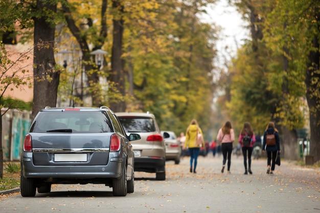 아스팔트 도로의 조용한 지역에 주차 된 회색 반짝이는 자동차