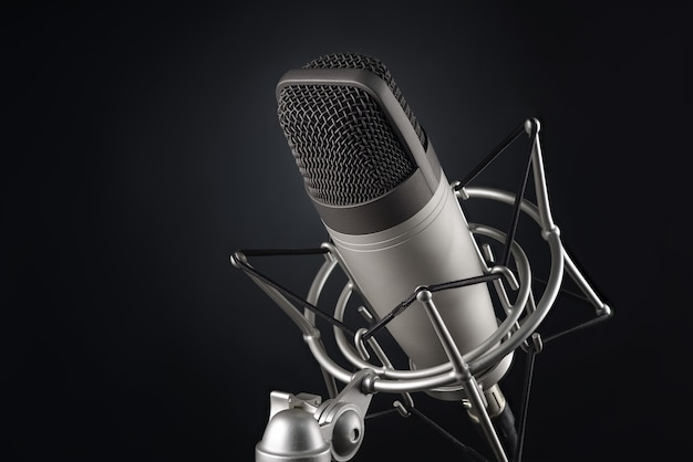 Gray studio condenser microphone in shock mount on black background