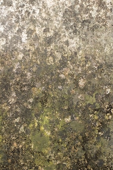 Gray wall with moisture and mold texture