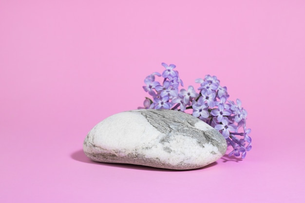 Gray white stone as a podium, with lilac flowers on a pink background with hard shadows. minimal empty cosmetic product presentation scene. geometric eco podium.
