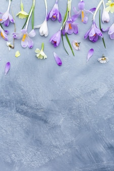 Gray and white surface with purple and white spring flowers border and space for text