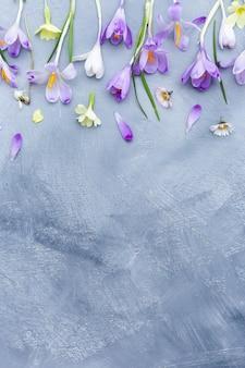 Superficie grigia e bianca con bordo di fiori primaverili viola e bianchi e spazio per il testo