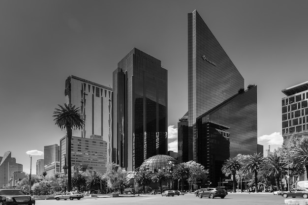 Grayscale shot of modern skyscrapers and tropical trees