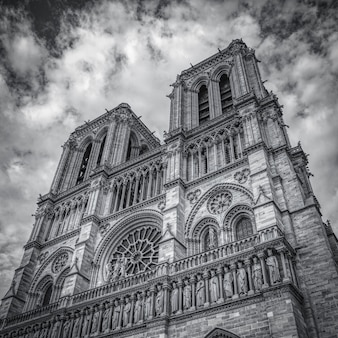 Grayscale shot of notre-dame de paris in paris, france