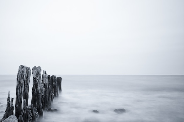 Снимок в оттенках серого на красивый морской пейзаж под облачным небом в остзее, германия
