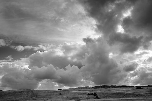 어두운 폭풍 구름 아래 덤불이 있는 풍경의 회색조 샷