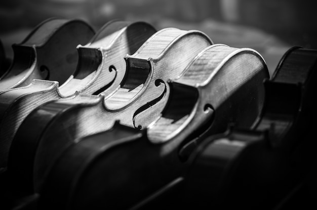 Grayscale shot of various violins aligned on the display of a  musical instrument shop