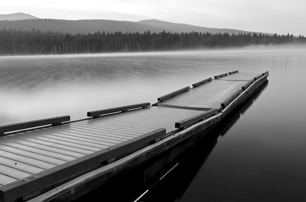 Grayscale shot of a water boat dock in a lake surrounded by a forest