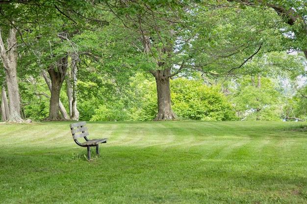 アメリカ、ロチェスターのリラクゼーションのための素晴らしい美しいきちんとした緑の公園とベンチ