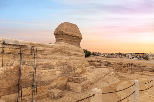 The great sphinx and the buildings of giza, cairo, egypt.